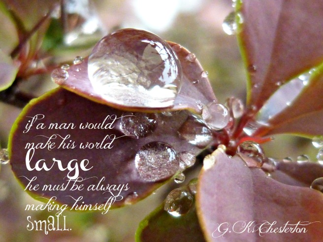 Bryana Johnson, Having Decided To Stay, G.K. Chesterton Quote, Humility, Rain on Leaves