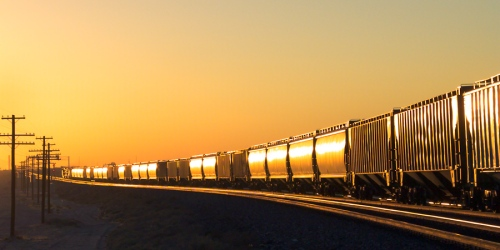 Grain cars of a Fresno grain train roll into the sun.