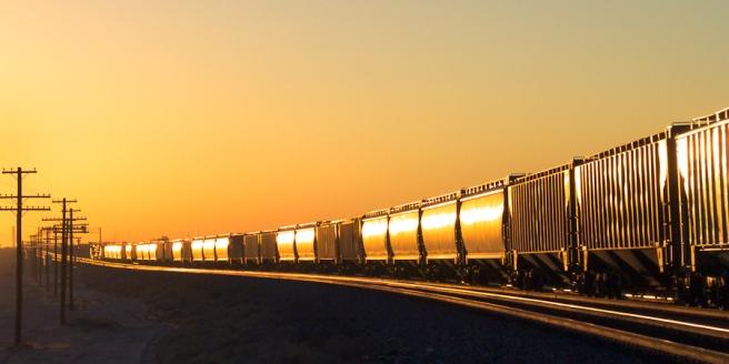 Grain cars of a Fresno grain train roll into the sun.